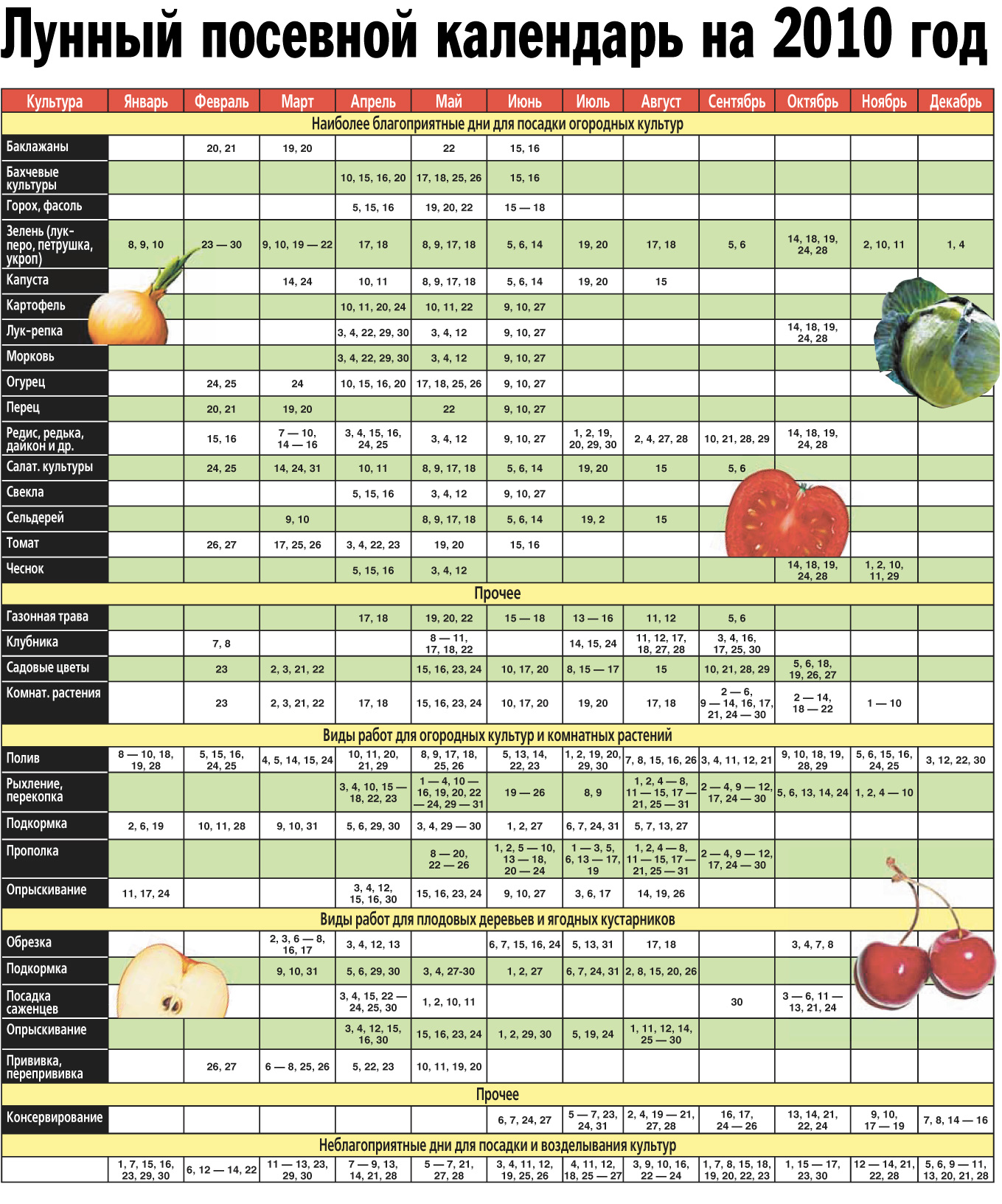 Календарь посадки чеснока: благоприятные дни, лунный календарь 11