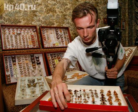 Ночные бабочки калуга фото 689-581
