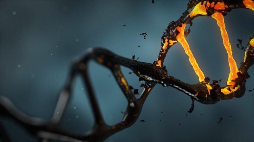 ВКалужской области дачного вора словили пооставленной ДНК