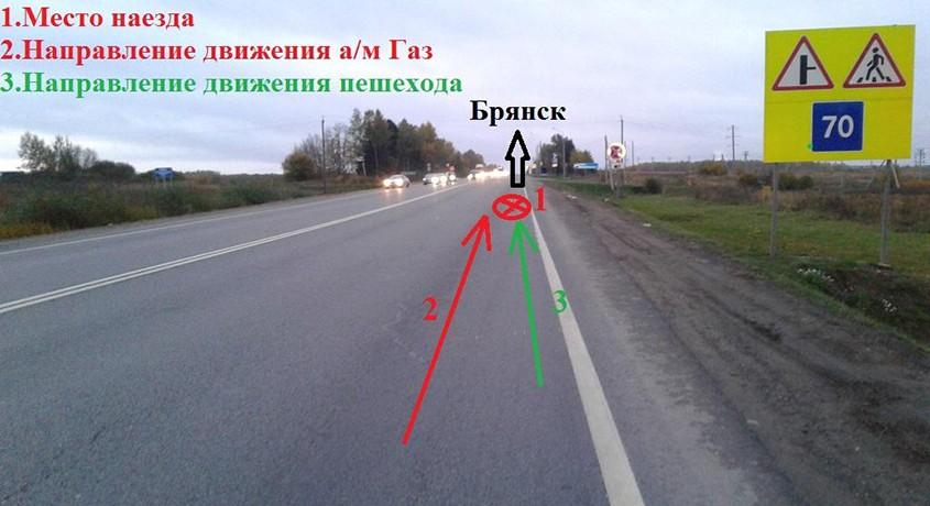 Натрассе под Омском шофёр фуры насмерть сбил 70-летнего пенсионера