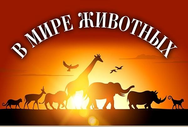 На мітингах проти пенсійної реформи в Росії затримали 1018 осіб - Цензор.НЕТ 3974