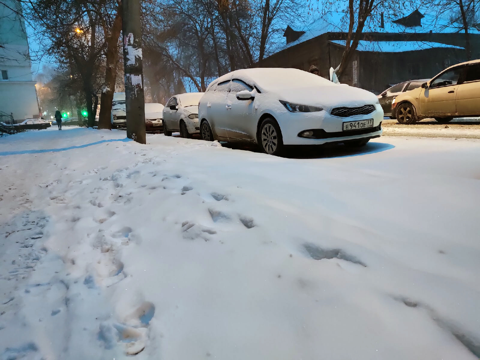 Тульская калуга снегопад