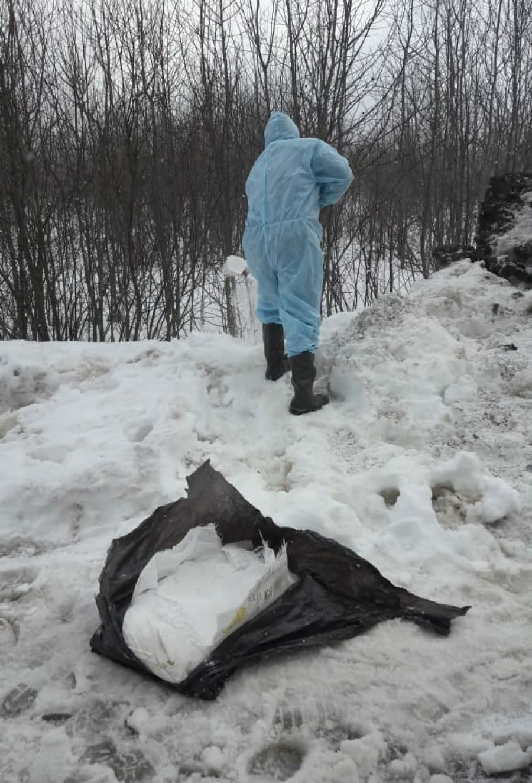 калуга турп свиньи литвиново 28 февраля 2021 года