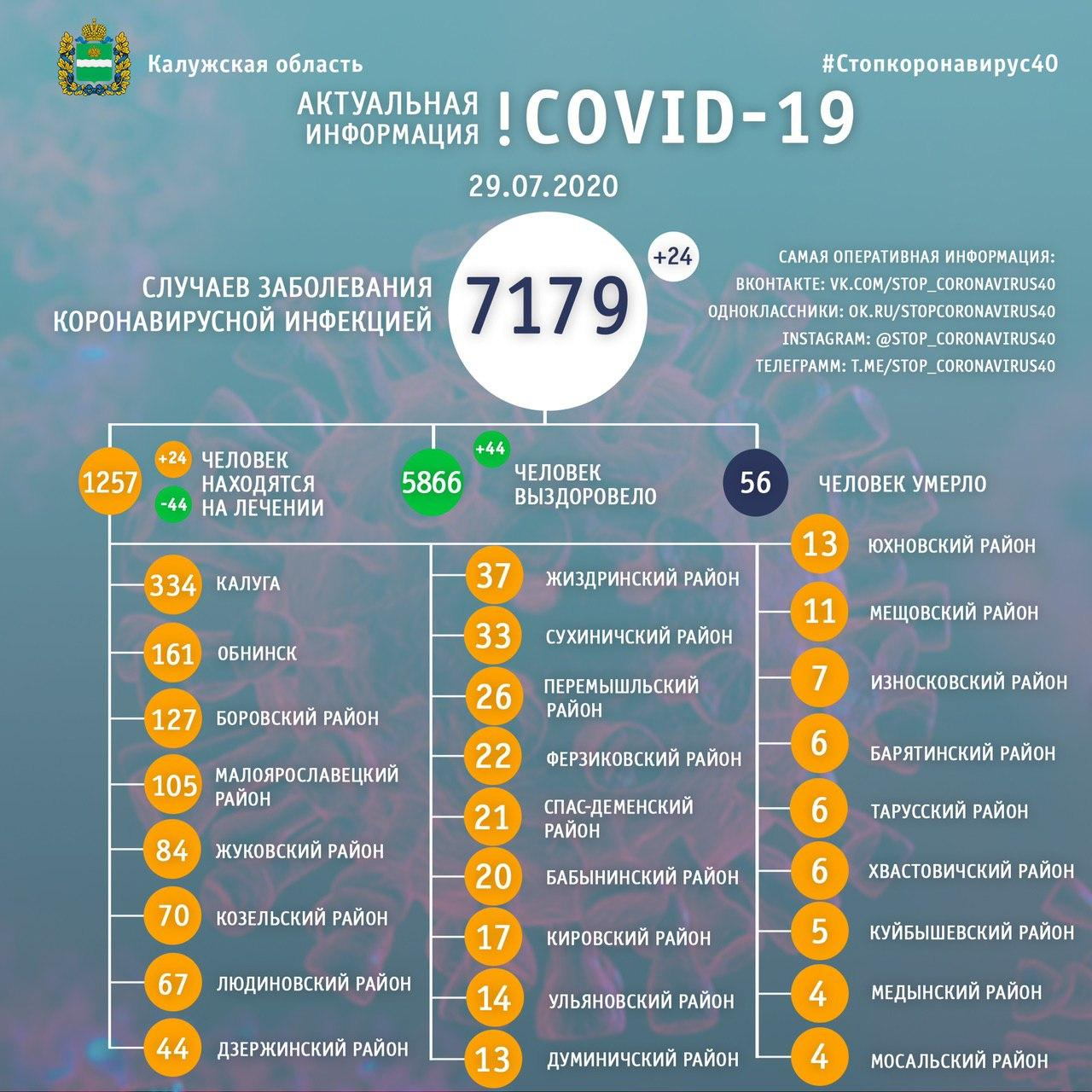 Коронавирус в Калуге 29 июля