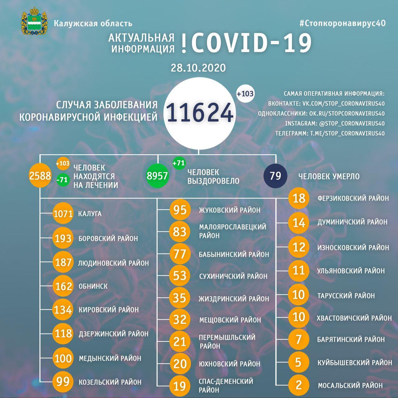 Официальные данные по коронавирусу в Калужской области на 28 октября 2020 года.
